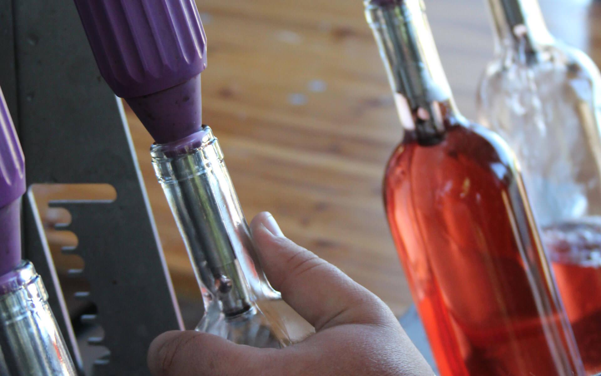 Il-civettaio-vino2
